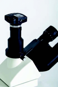 Microscope (Medicus Plus)